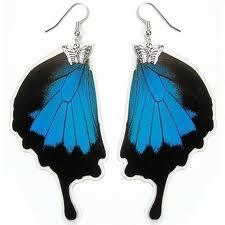 Brazil Jewelry Butterfly Wing